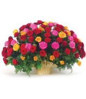 Basket of bright roses